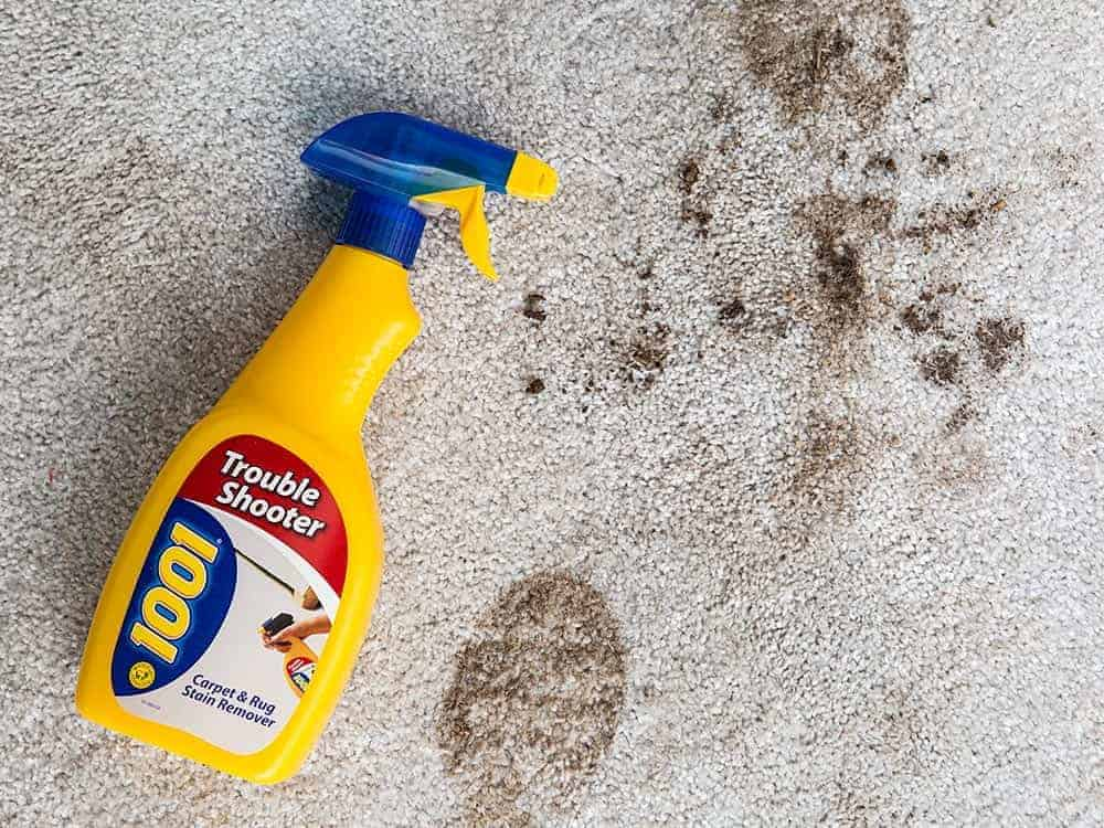 The best carpet stain remover and carpet spot cleaner