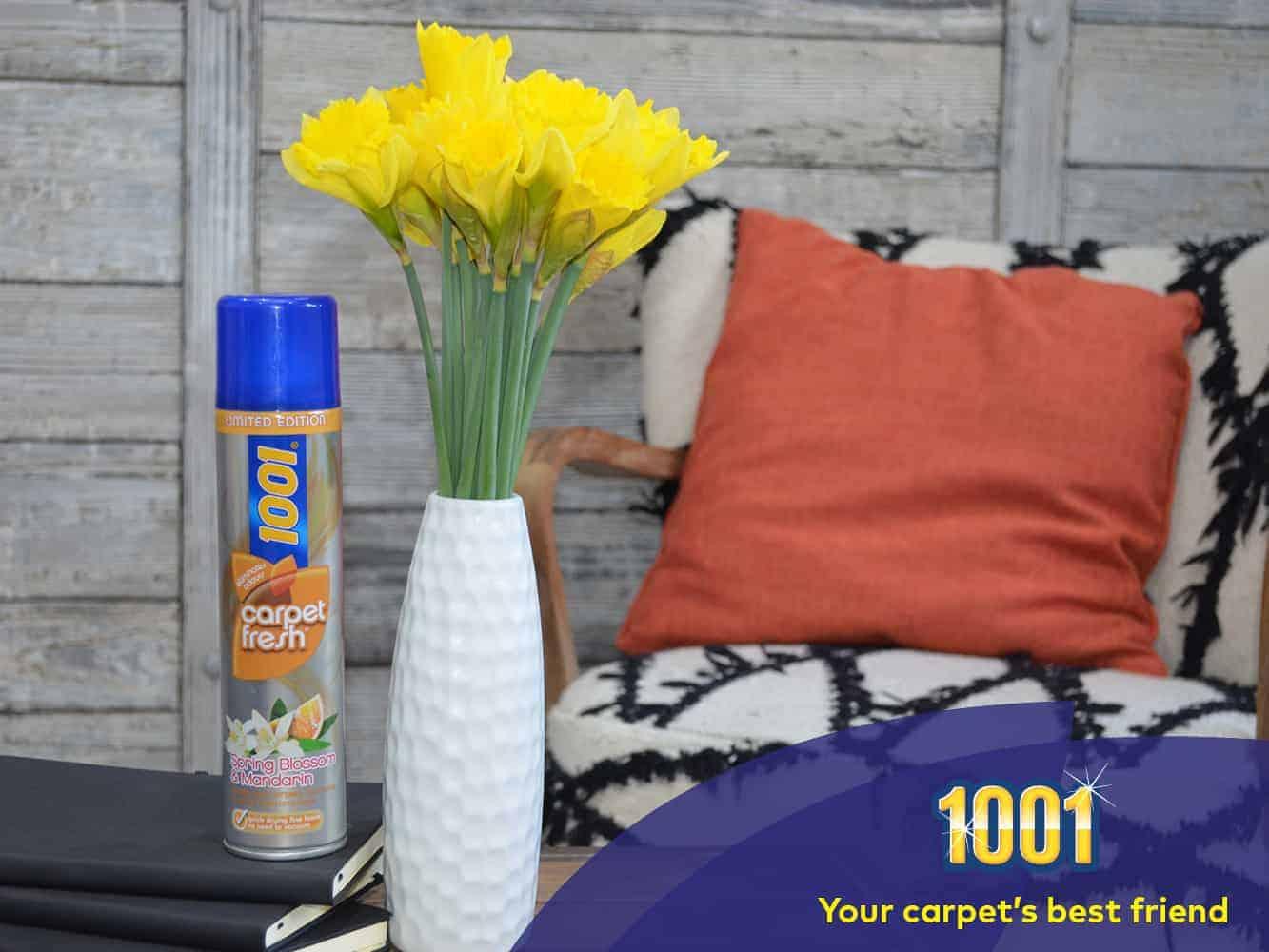 carpet odour remover
