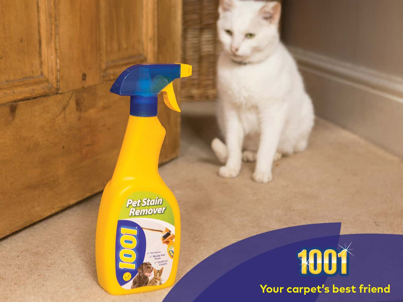 clean cat wee off carpet