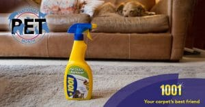 Your 1001 carpet cleaning products Fresh Friday round-up