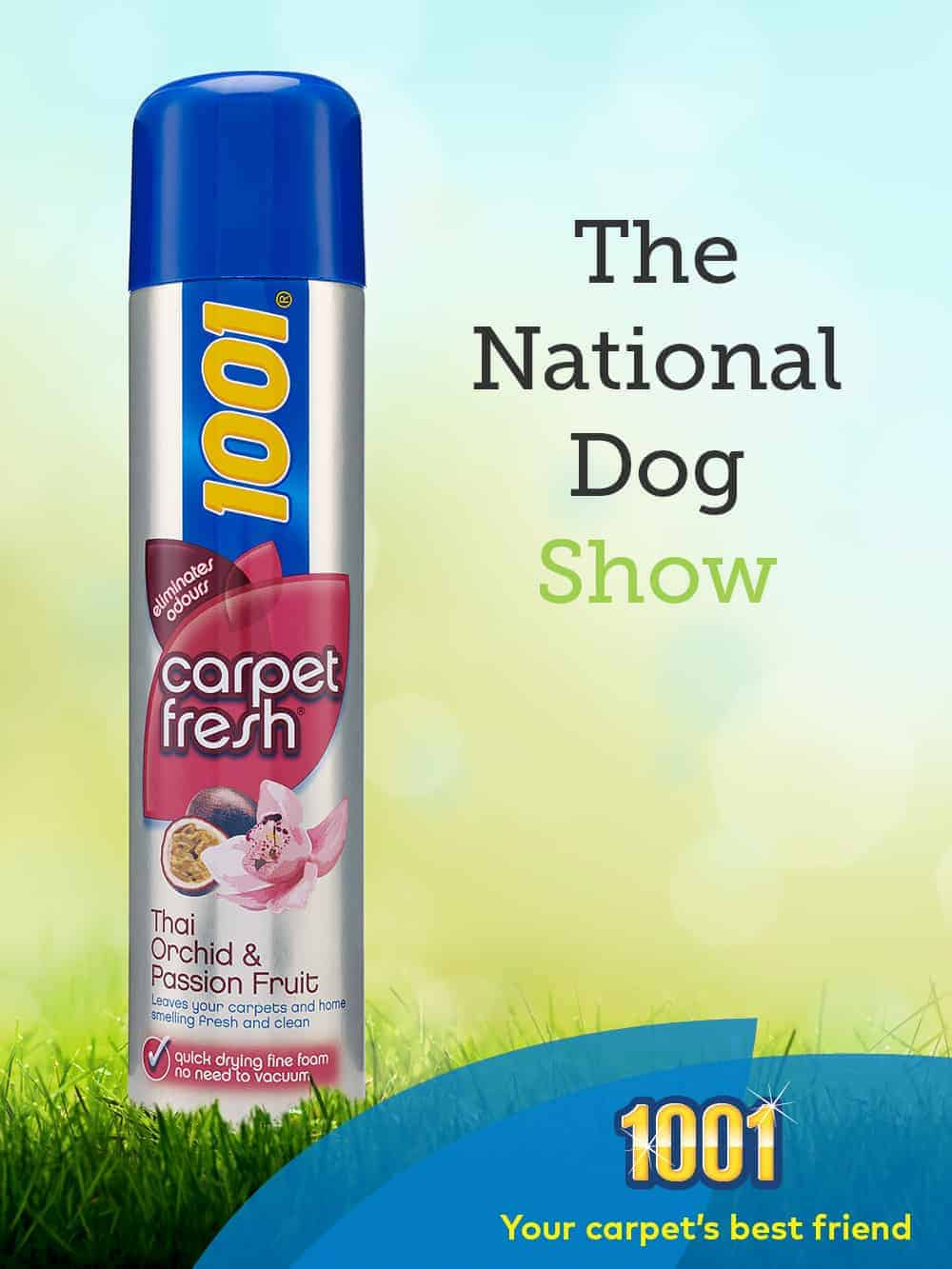 blog may 05 national dog show 011
