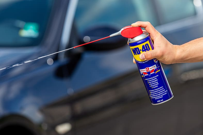 Трикове за отстраняване на насекоми от автомобил