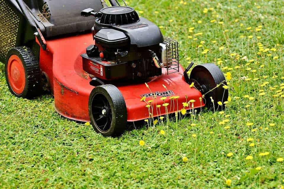 lawn mower 2408925 960 720