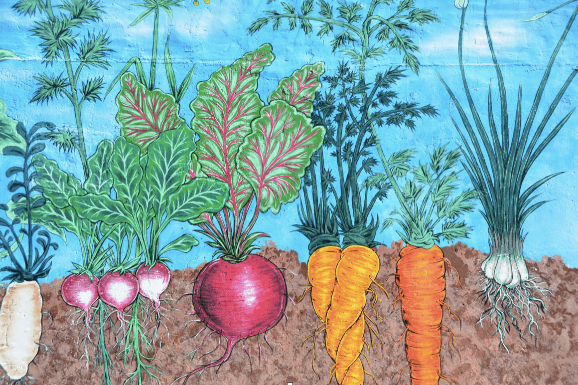 Jak zabránit rezavění podpěr rostlin