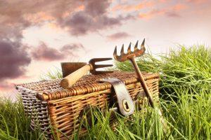 En nem guide til at hold haveredskaberne fri for rust