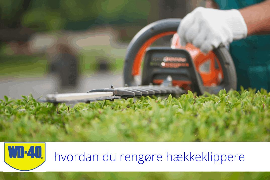 hvordan du rengøre hækkeklippere