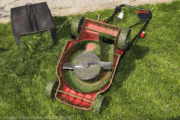 clean lawn mower blades 2