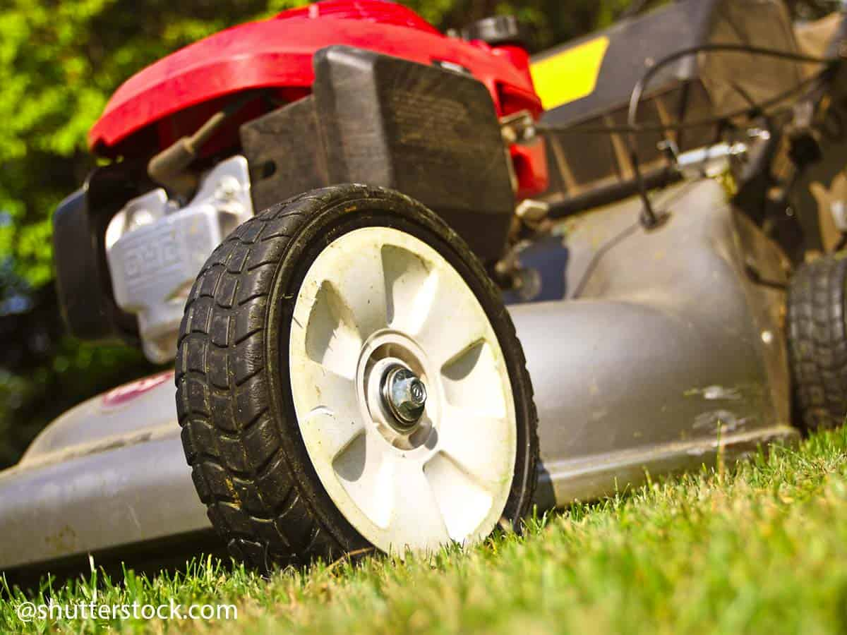 how to overhaul a petrol lawnmower 4