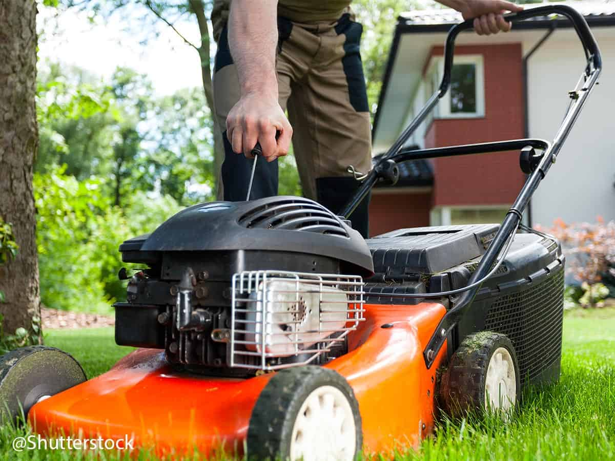 eftersyn på benzin græsslåmaskine