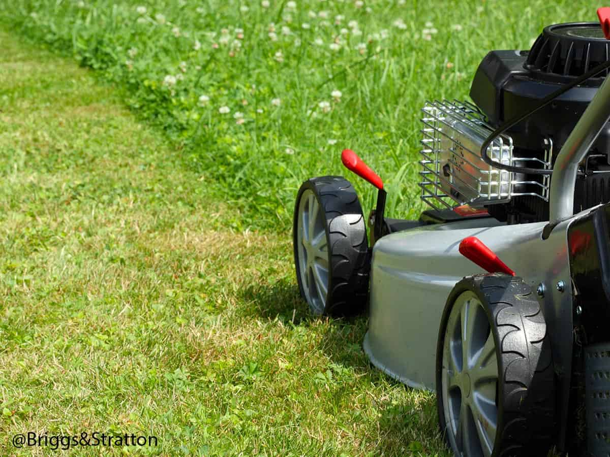 how to overhaul a petrol lawnmower 6