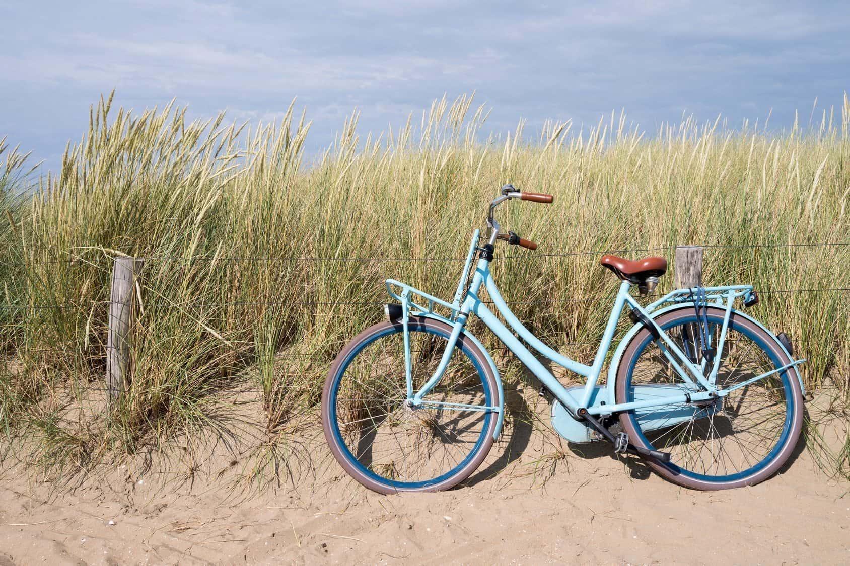 Fahrrad Dünen WD-40