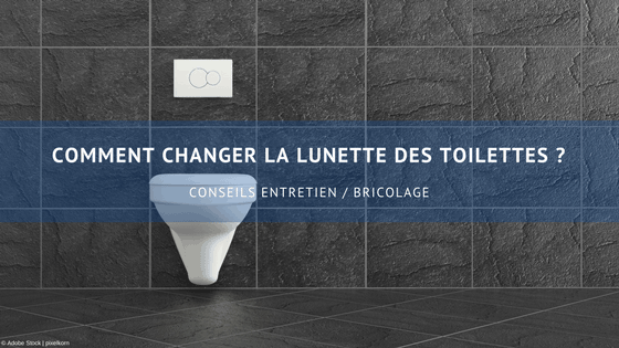Comment-changer-la-lunette-des-toilettes