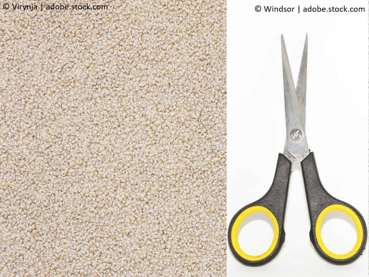 kaugummi aus teppichen entfernen 2