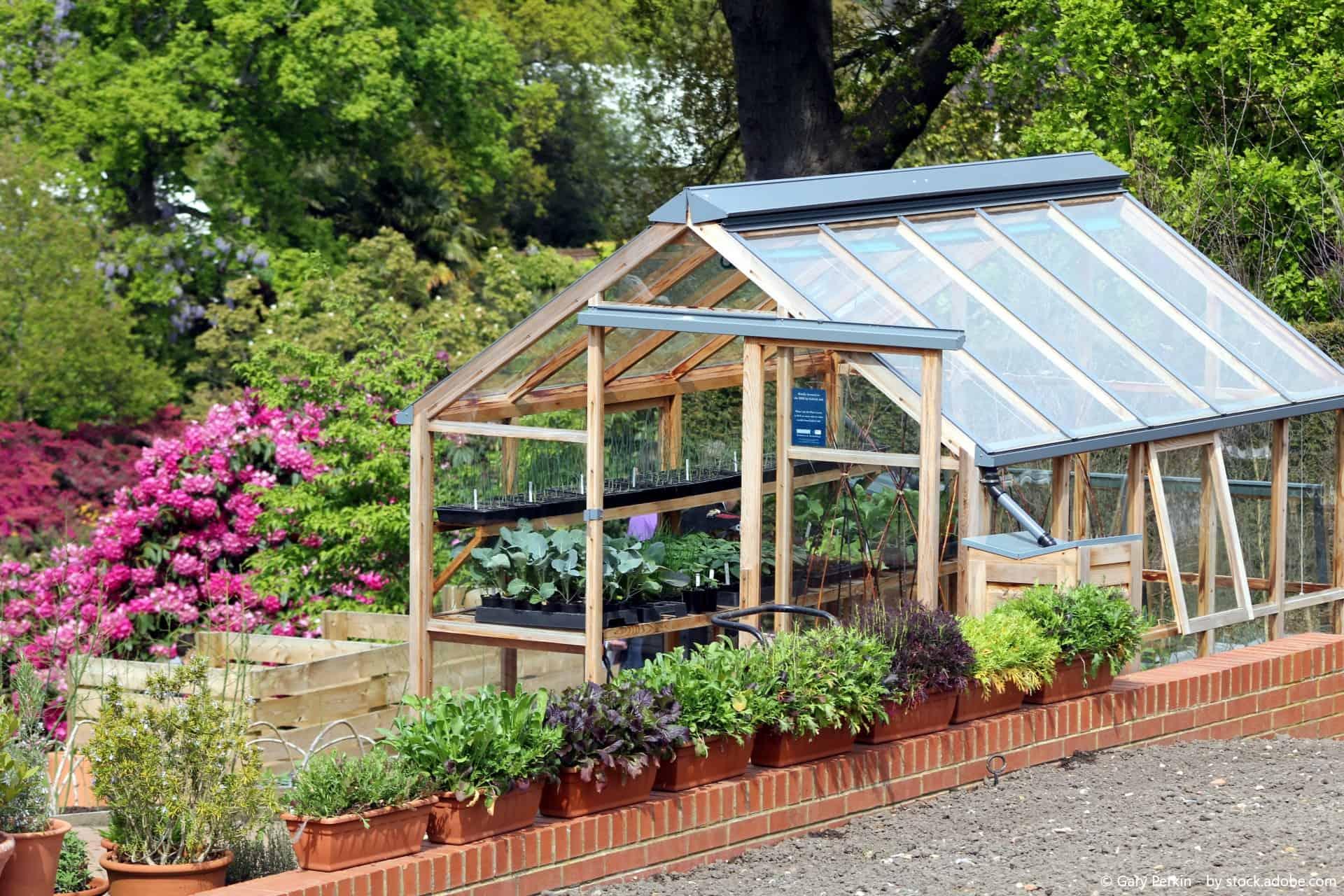 Warum lohnt sich ein Gewächshaus? - Der WD-40 Tipp für wahre Gartenprofis