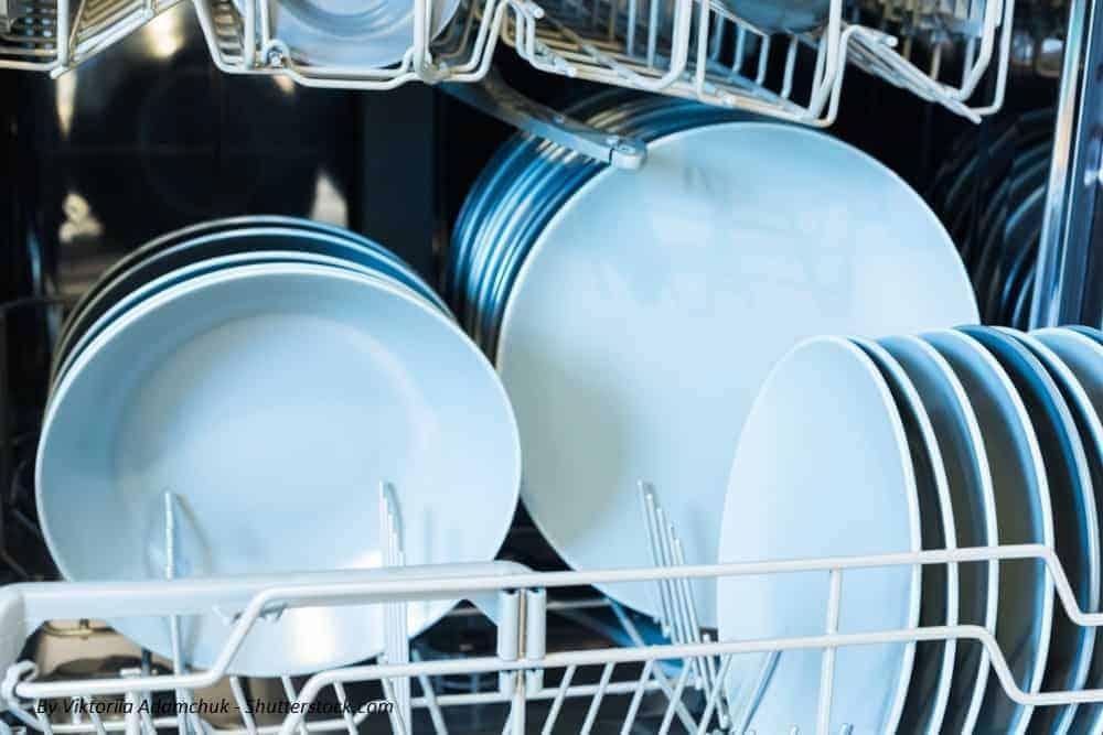 καθαρισμός πλυντηρίου πιάτων