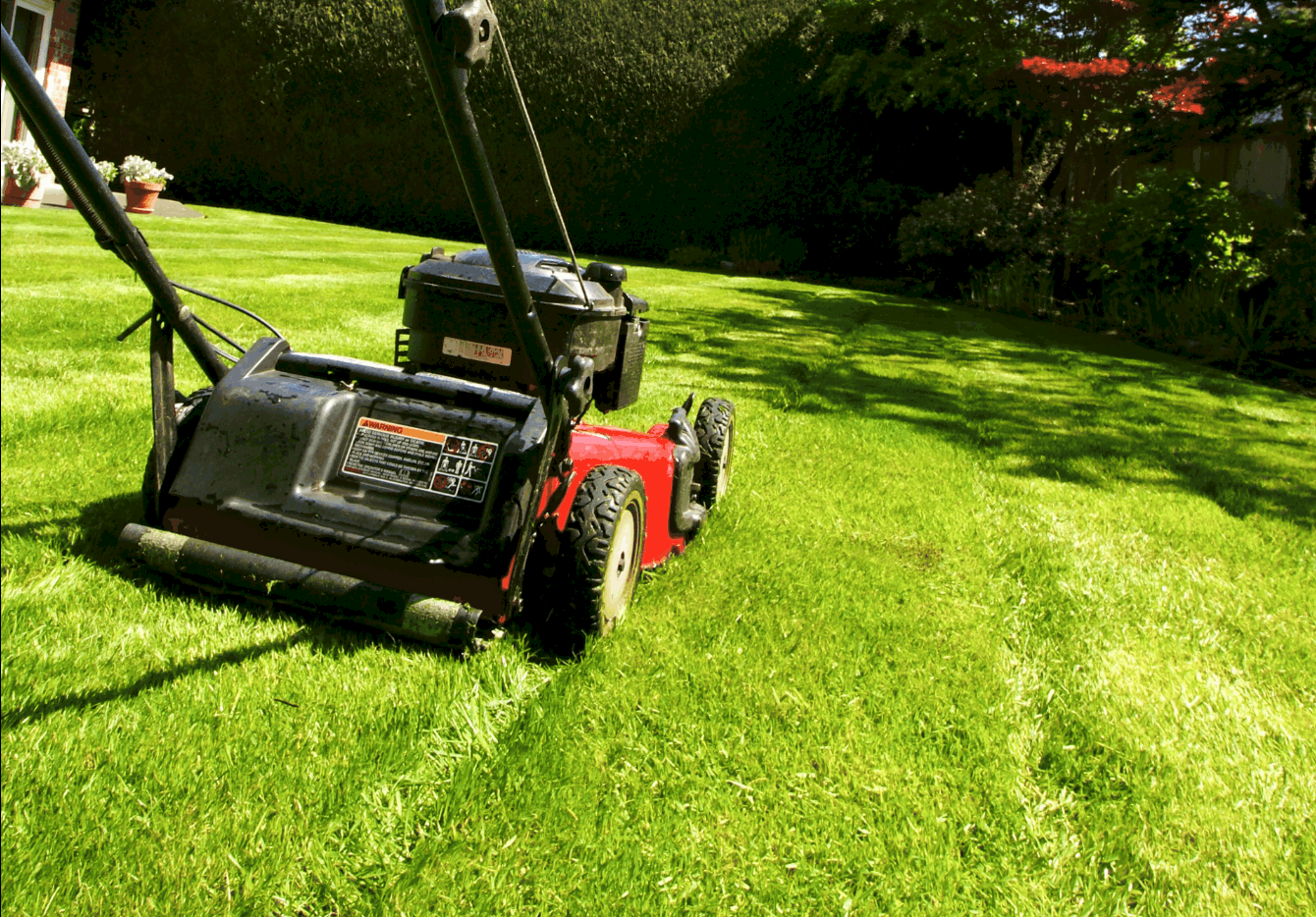 lawn mower cleaner