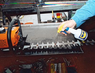 aplicator chainsaw