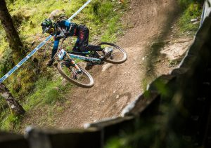 Carnage in the woods for Danny Hart
