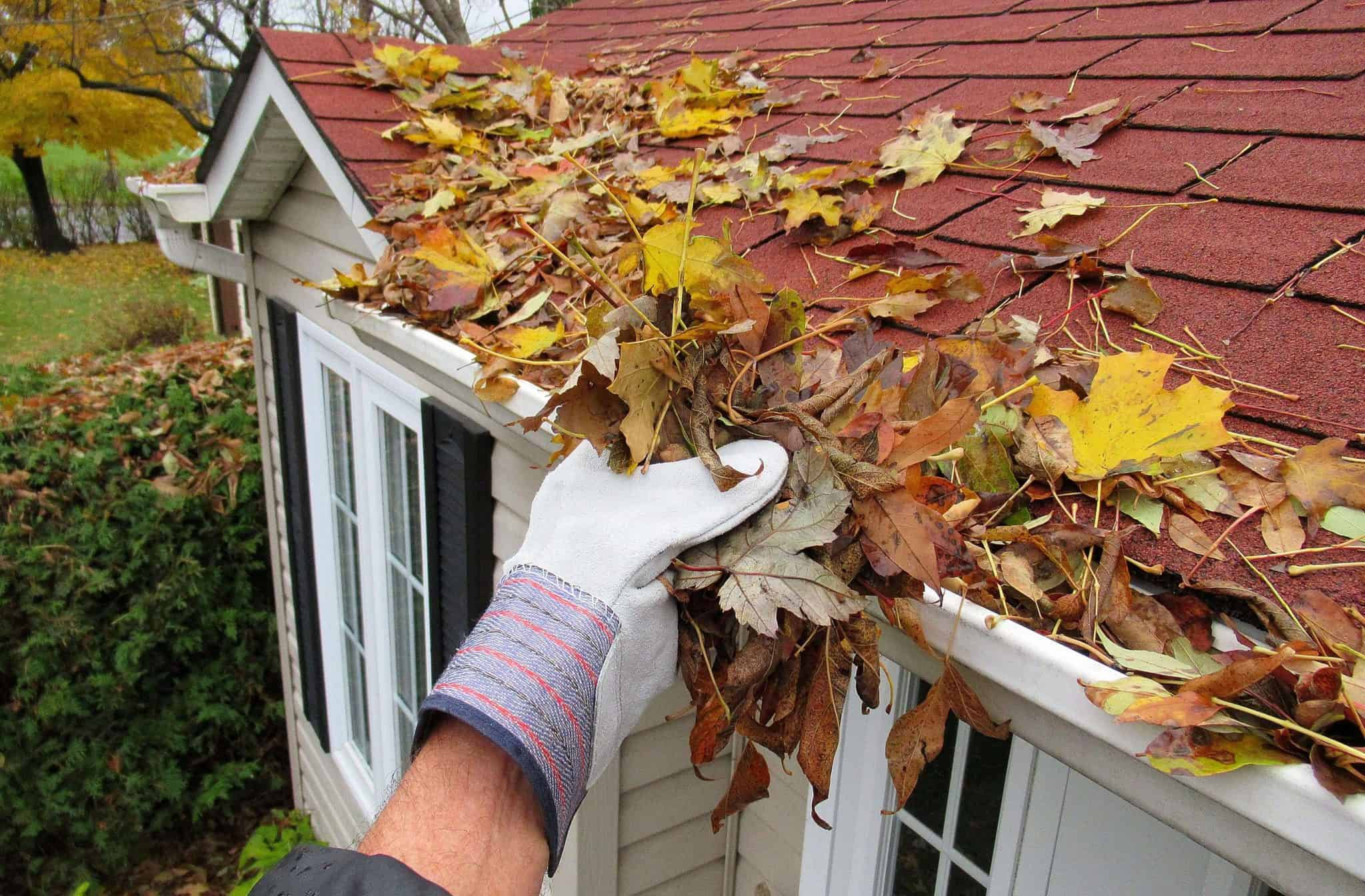How To Clean Your Gutter