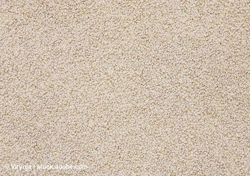 mantener alfombra limpia