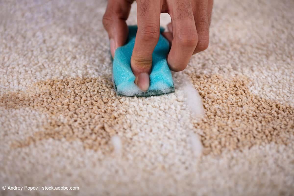 remover mancha de una alfombra