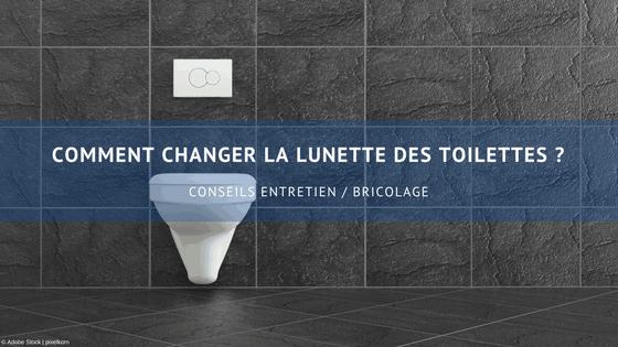 comment changer la lunette des toilettes wd 40 fr. Black Bedroom Furniture Sets. Home Design Ideas
