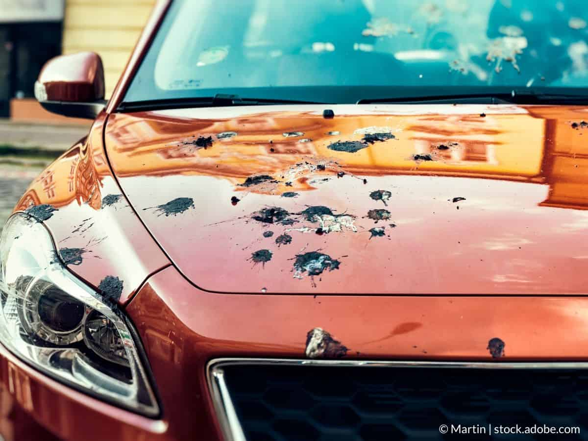 nettoyer capot voiture