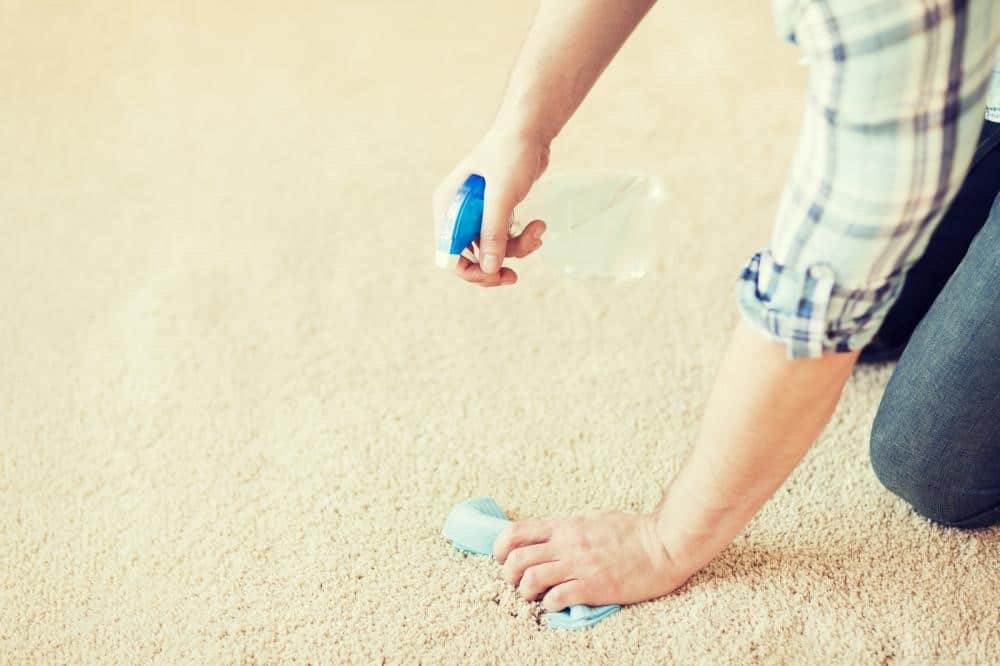 removing chewing gum from carpet