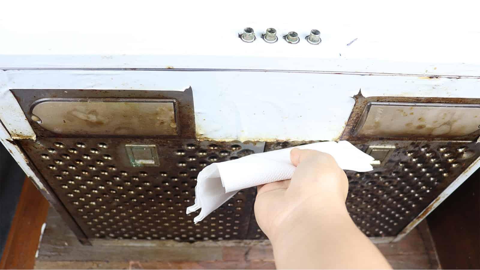 clean chimney mesh