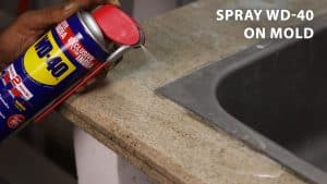 spray wd 40 on mold