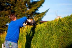 Come effettuare la manutenzione del tagliasiepe in modo facile e sicuro!