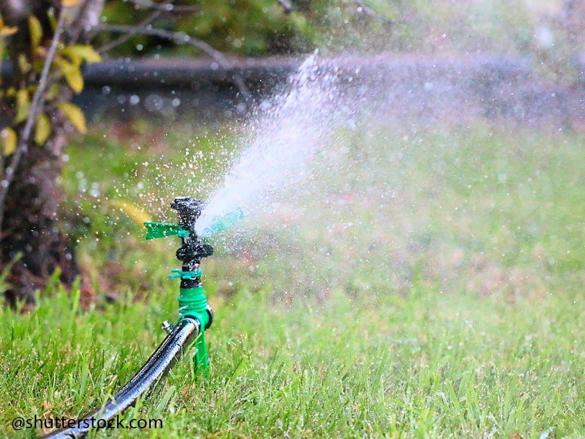 irrigatore pop up