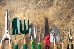3 conseils pour l'entretien du jardin