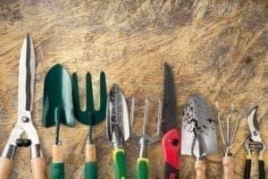 3 Tips om de tuin te onderhouden