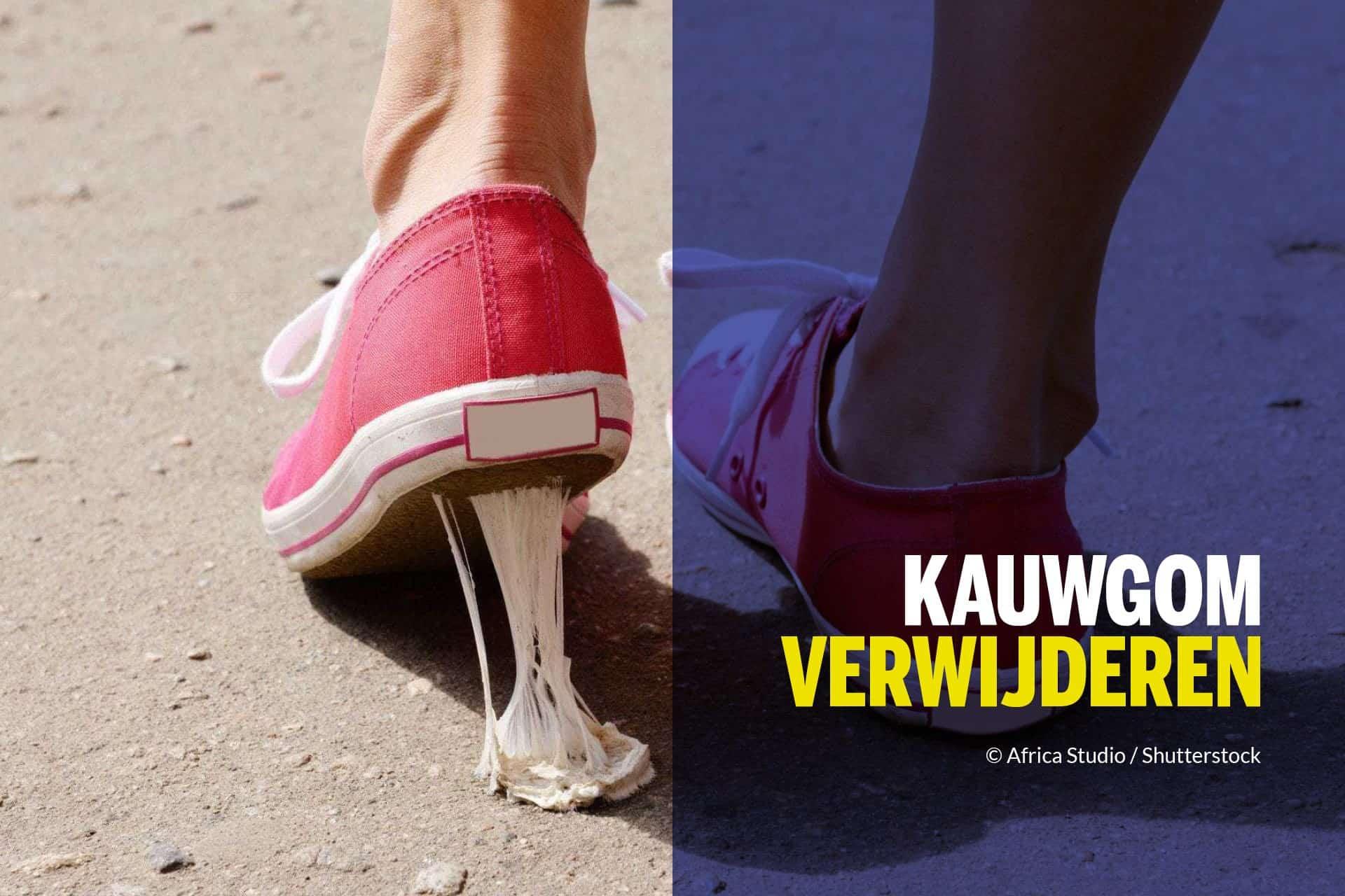 Kauwgom In Kleding Verwijderen 4 Manieren Wd 40 Nederland