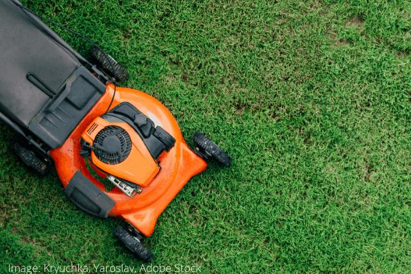 gazon met schoongemaakte grasmaaier