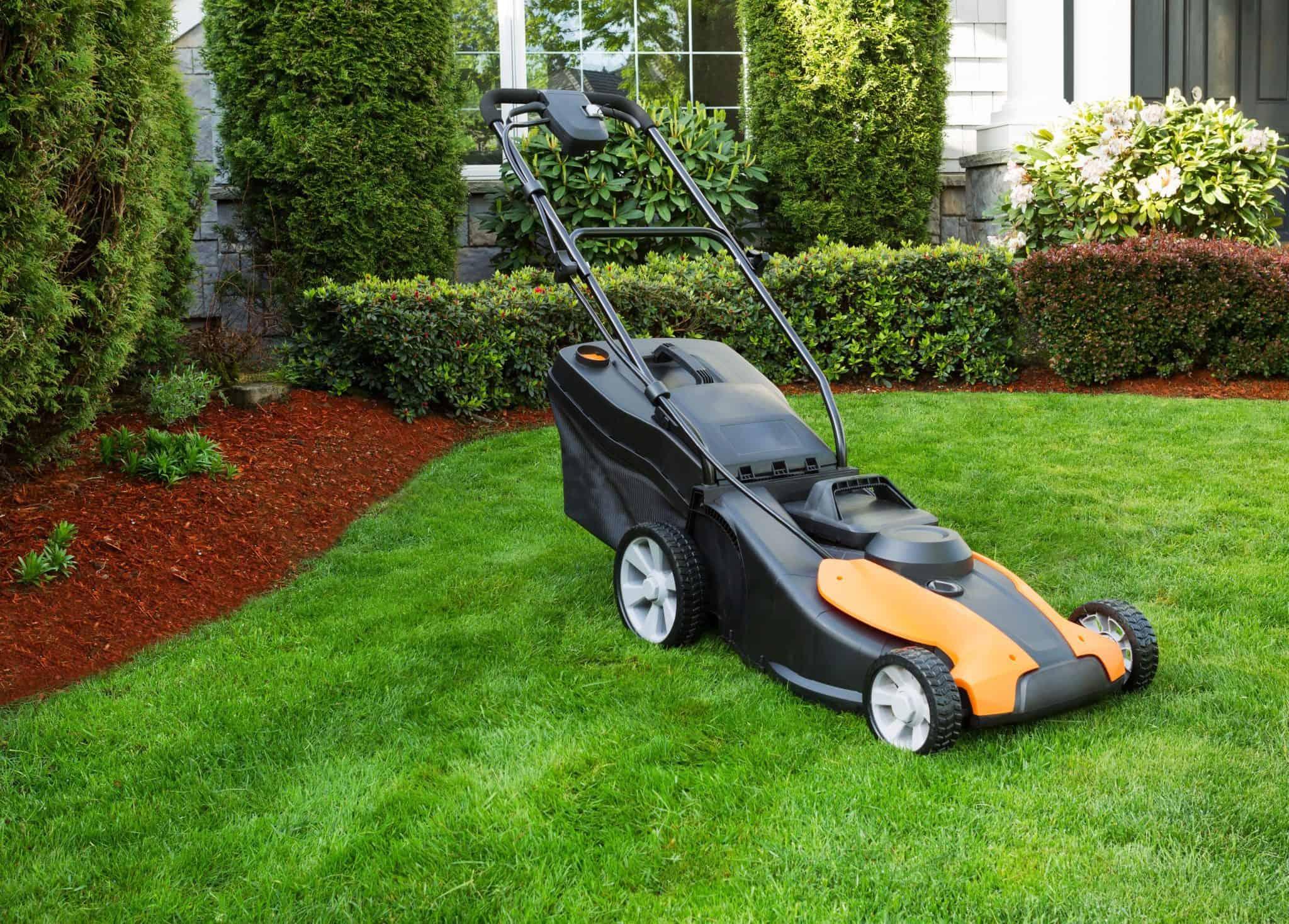 rengøringsmiddel til græsslåmaskinen