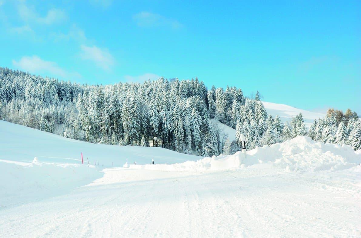 wd40 vinter