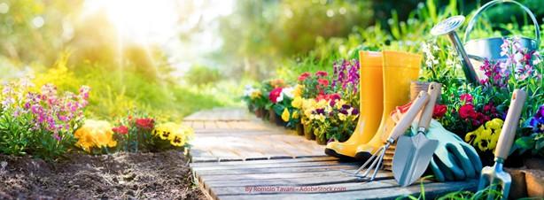 lagring av hageredskap