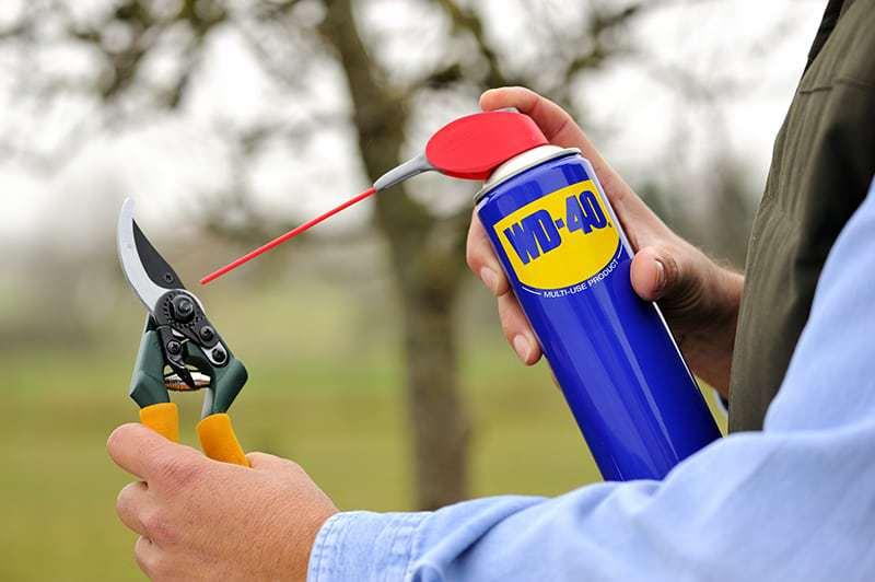 Como proteger e limpar as ferramentas de jardinagem