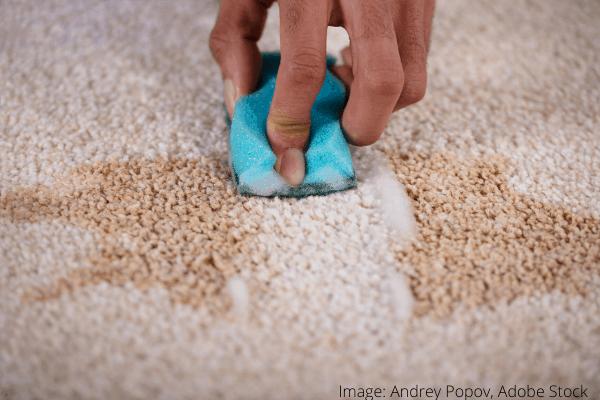 curățarea petelor de pe covor