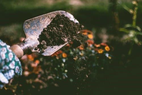 лопата 2