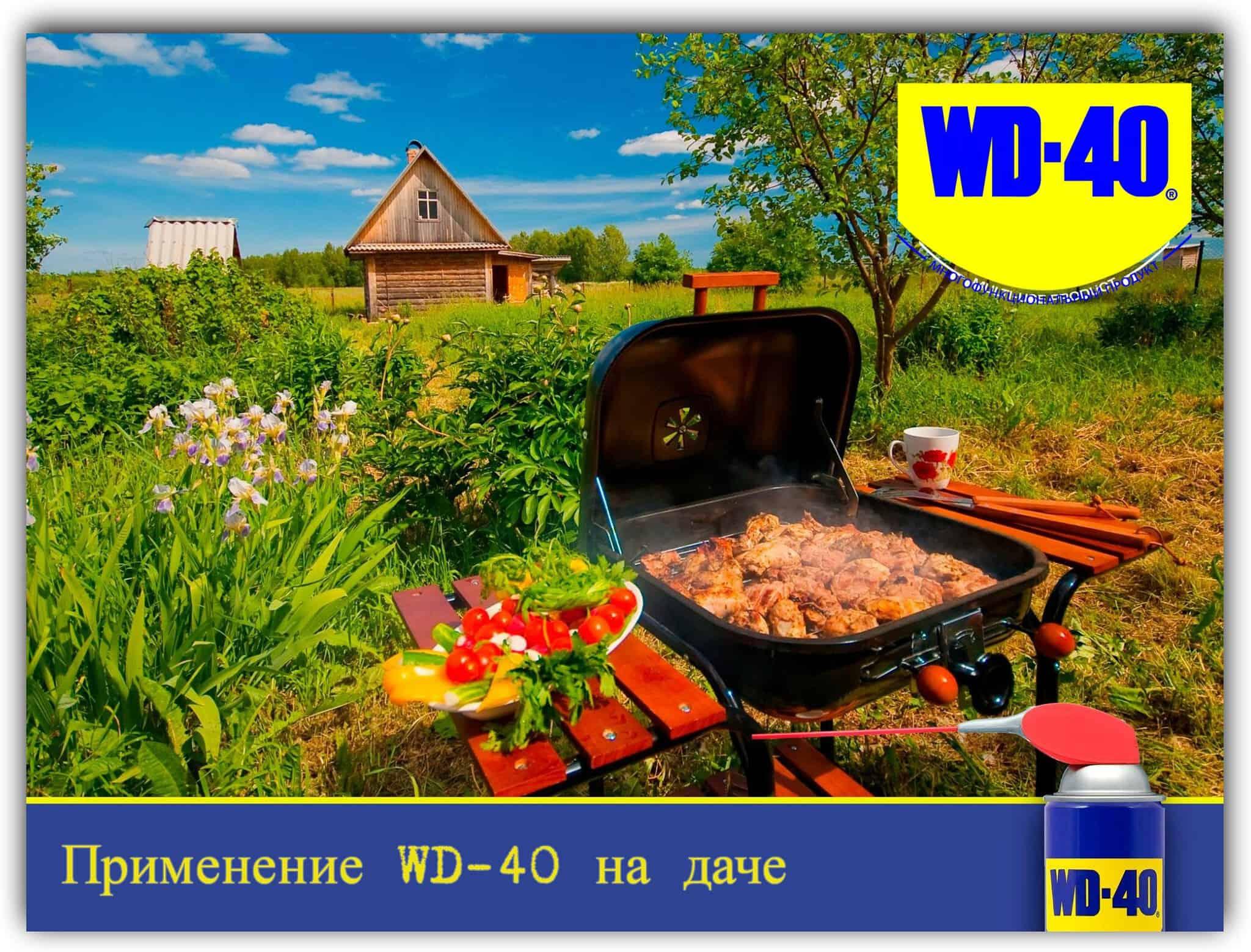 Применение WD-40 летом на даче и дома