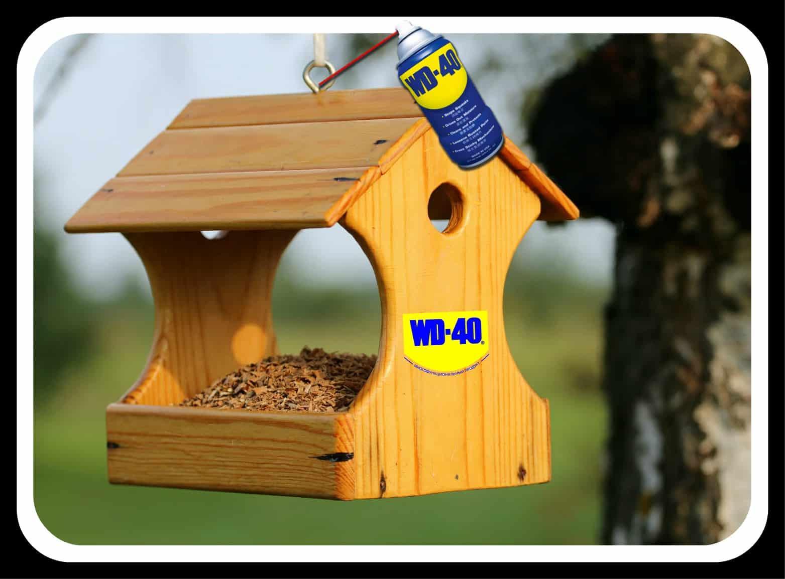 Как ухаживать за скворечником для птиц?