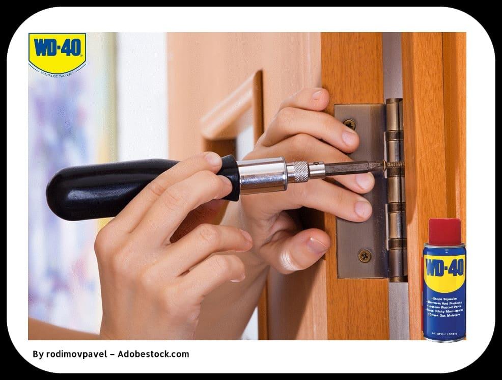 Как устранить скрип дверных петель?