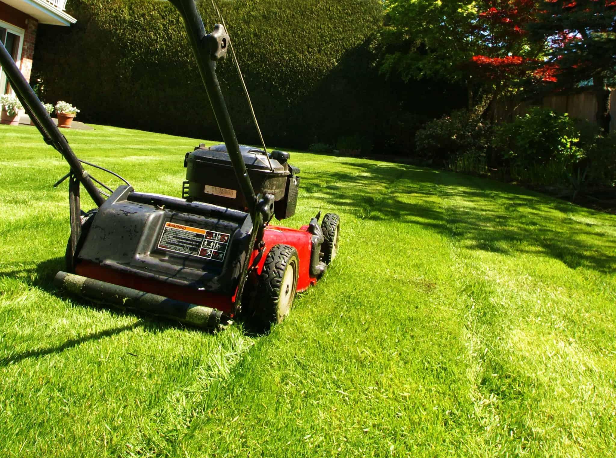 čistilec za travno kosilnico