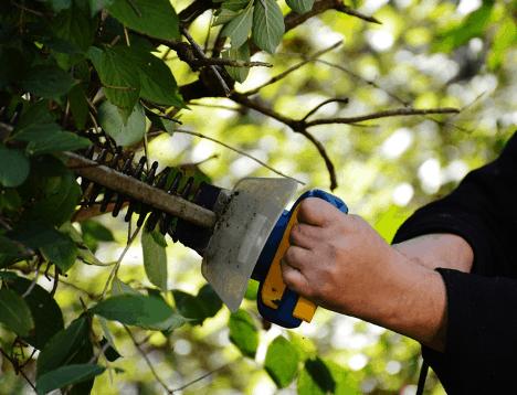 Muž strihajúci živý plot