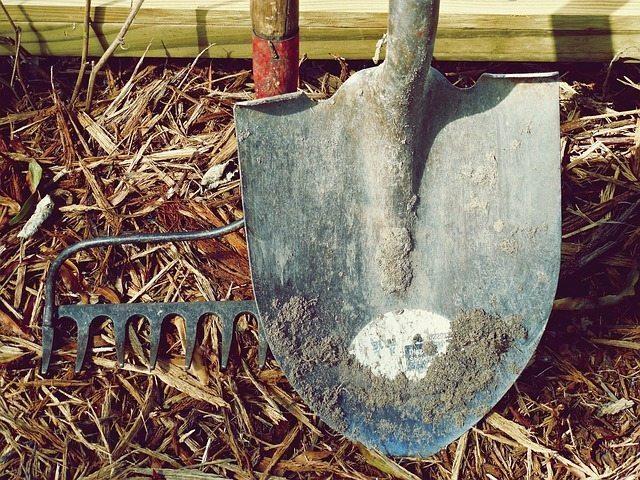 Förvaring av trädgårdsverktyg – Tipsen och trixen du behöver veta