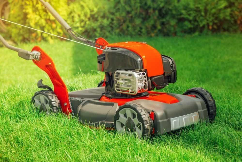 rengör och underhåller gräsklippare