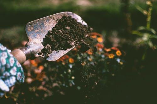Perfekta förvaringen av trädgårdsredskap